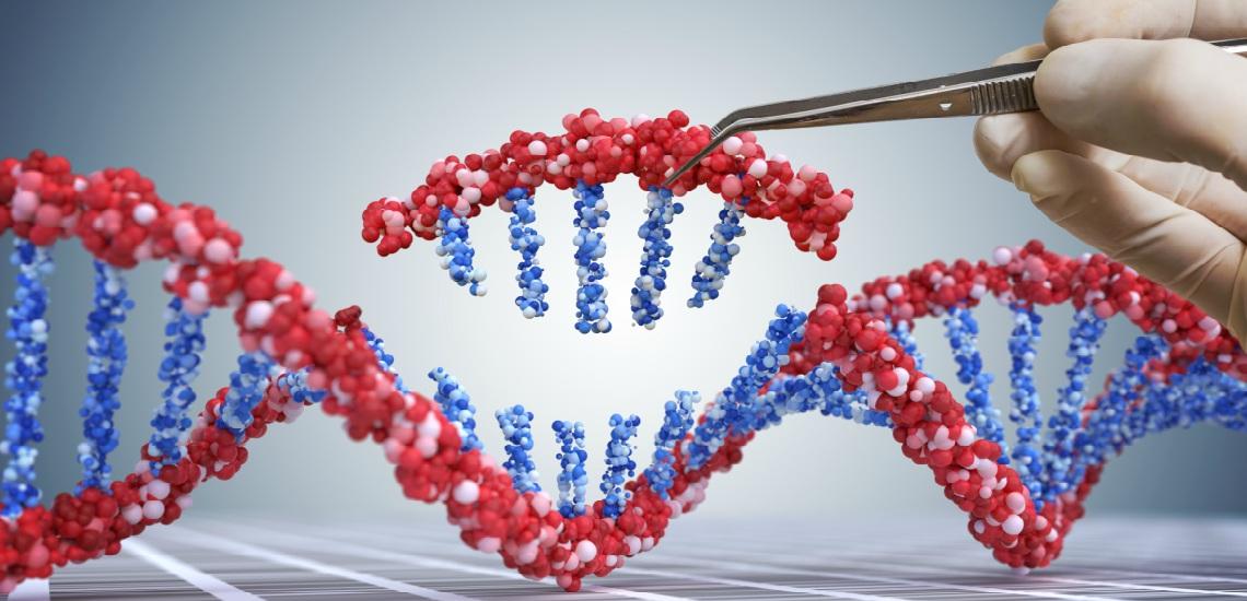 Rosetta Genomics Memainkan Peran Signifikan dalam Pertumbuhan MicroRNA